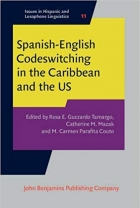 Book Spanish-English Codeswitching in the Caribbean and the US (Issues in Hispanic and Lusophone Linguistics) free
