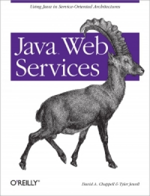 Download Java Web Services free book as pdf format
