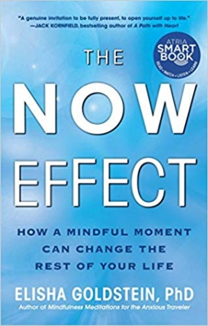 Download The Now Effect: How a Mindful Moment Can Change the Rest of Your Life free book as epub format