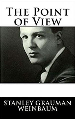 Download The Point of View free book as epub format