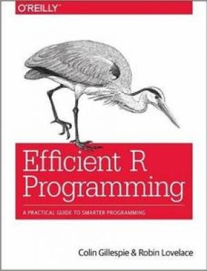 Download Efficient R Programming free book as pdf format