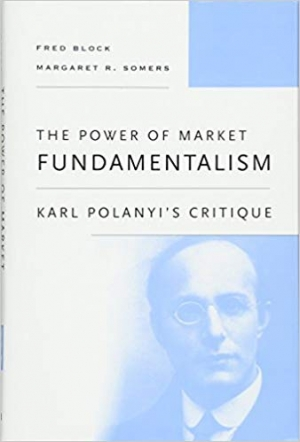Download The Power of Market Fundamentalism: Karl Polanyi's Critique free book as pdf format