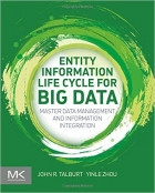 Book Entity Information Life Cycle For Big Data free