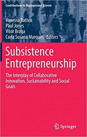 Download Subsistence Entrepreneurship: The Interplay of Collaborative Innovation, Sustainability and Social Goals free book as pdf format