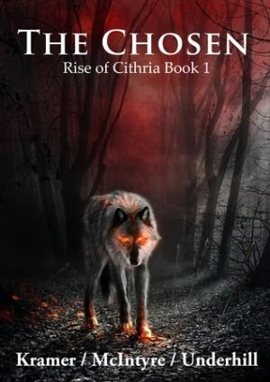 Download The Chosen free book as pdf format