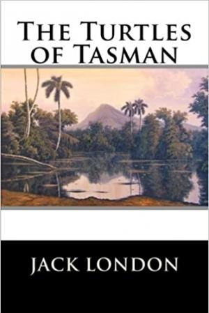Download The Turtles of Tasman free book as epub format