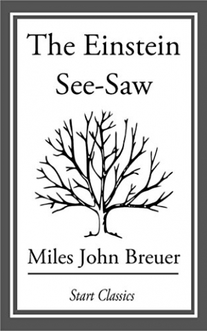 Download The Einstein See-Saw free book as epub format