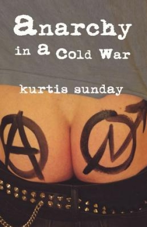 Download Anarchy in a Cold War free book as pdf format
