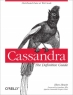 Book Cassandra: The Definitive Guide free