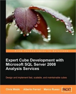 Download Expert Cube Development with Microsoft SQL Server 2008 Analysis Services free book as pdf format