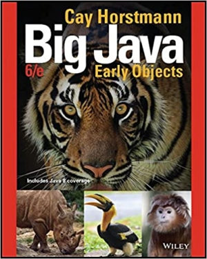 Download Big Java: Early Objects, 6th Edition free book as pdf format