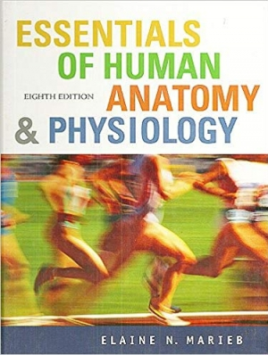 Download Essentials of Human Anatomy and Physiology free book as pdf format