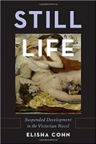 Book Still Life: Suspended Development in the Victorian Novel free